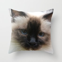 Lucy The Cat 2 Throw Pillow