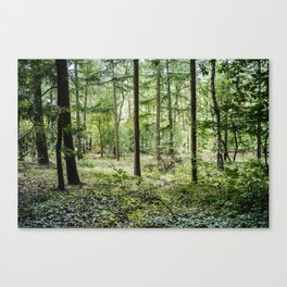 FIND A BEAUTIFUL PLACE AND GET LOST Canvas Print