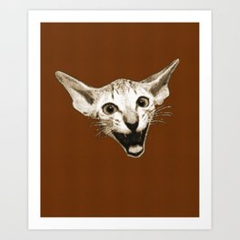 The Laughing Cat Art Print