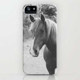 Horse III _ Photography iPhone Case