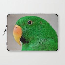 Eclectus Portrait  Laptop Sleeve
