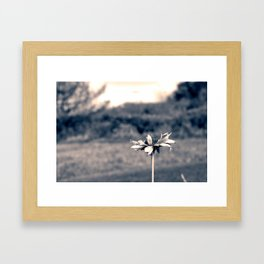 Black and White Flower Framed Art Print