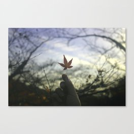 Kyoto Maple Canvas Print