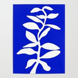 blue stem Poster
