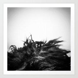 Labradoodle Hair Art Print