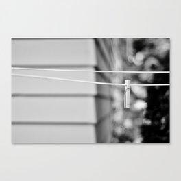 the line Canvas Print