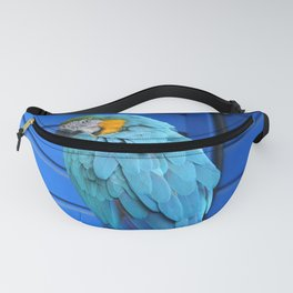 Pretty Parrot Fanny Pack