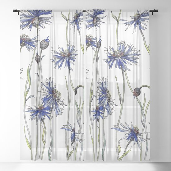 Blue Cornflowers, Illustration by jrosedesign