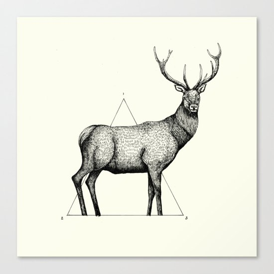 'Wildlife Analysis II' Canvas Print
