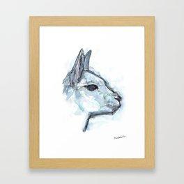 Vicuna Portrait Framed Art Print