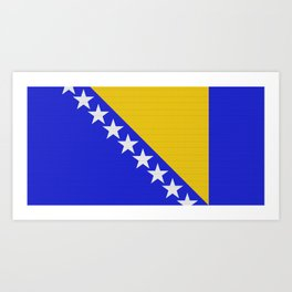 Bosnia and Herzegovina Flag (Patchwork Look) Art Print