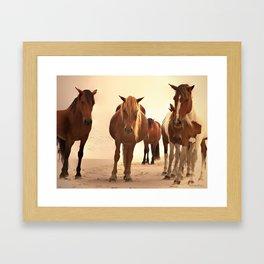 Beached Ponies - Group Framed Art Print