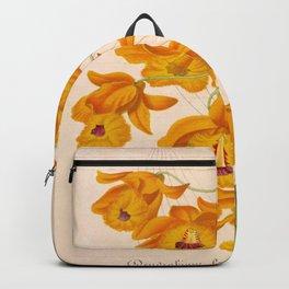 Dendrobium fimbriatum Vintage Botanical Floral Flower Plant Scientific Illustration Backpack
