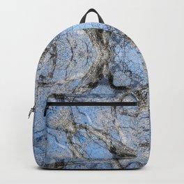 MAGIC WINTER COTTONWOOD MANDALA Backpack