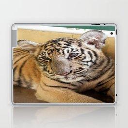 Tiger, Small Indo-China  Laptop & iPad Skin