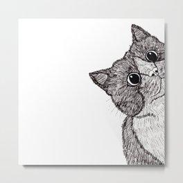 Astonishment Cat Metal Print