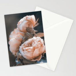 warm evenings Stationery Cards