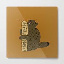 AAA cat Metal Print
