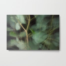 Abstract Eucalyptus Leaves on Black Background-Fleur Blur Series Metal Print