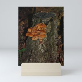 Shrooms by the road Mini Art Print