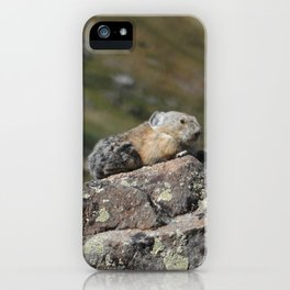 Summit Pika iPhone Case