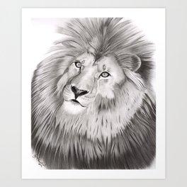 lion Graphite drawing Art Print