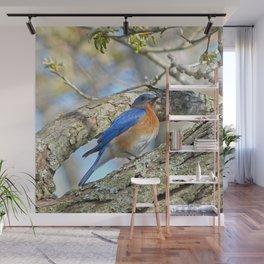 Bluebird in Tree Wall Mural