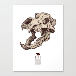 Bear Skull Canvas Print