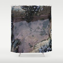 Pink Ocean Rock Pool with Mussels Shower Curtain