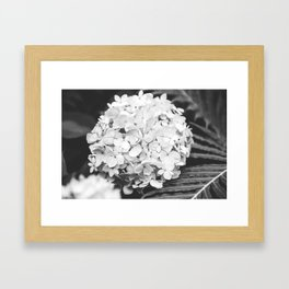 Launceston Framed Art Print