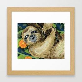 Three Toed Sloth Framed Art Print