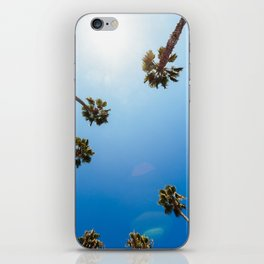 Palm Trees in Los Angeles iPhone Skin