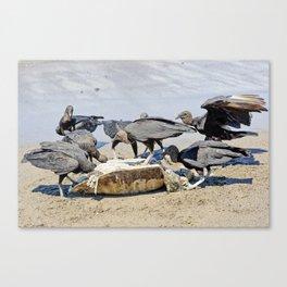 Wildlife in Action Canvas Print