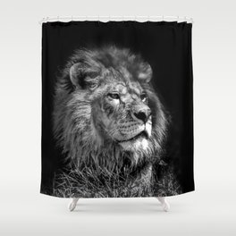Proud Young Lion Shower Curtain