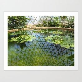 Botanical Garden reflection Art Print