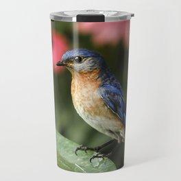 Perched Eastern  BlueBird Travel Mug