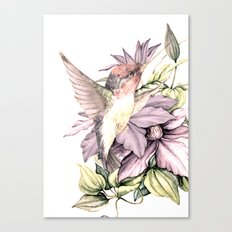 Hummingbird with Flowers Canvas Print