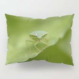 Green..... Pillow Sham