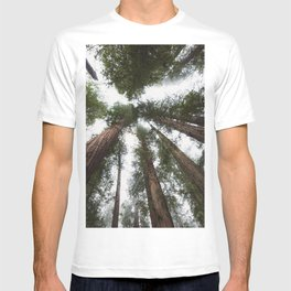 Redwood Portal - nature photography T-shirt