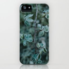 Frosted Blackberry iPhone Case