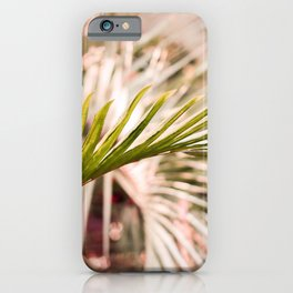 Sunkissed Palm iPhone Case