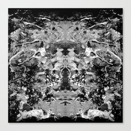 BLACK AND WHITE ABSTRACTION-1 Canvas Print