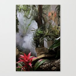 tropical flowers in the mist Canvas Print