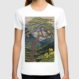 The Downwards Climbing T-shirt