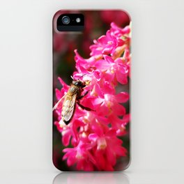 Bee2 and Blood Currant Ribes Sanguineum std iPhone Case