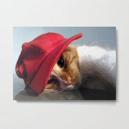 Cute Cat Wearing Red Cap Metal Print