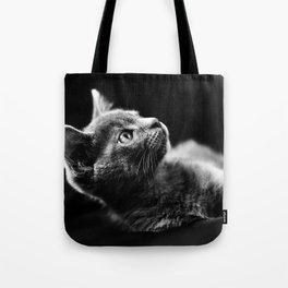 kitten looking up Tote Bag
