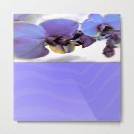 Purple Orchid and Zebra Metal Print