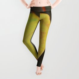 Red and Yelow Leaf Leggings