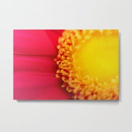 Think of the Sun - Fine Art Yellow and Red Nature Photography, Flower Metal Print